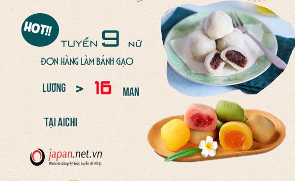 [ĐƠN HIẾM] - Cơ hội cho 9 nữ đơn hàng làm bánh gạo tại Aichi- Lương cực cao
