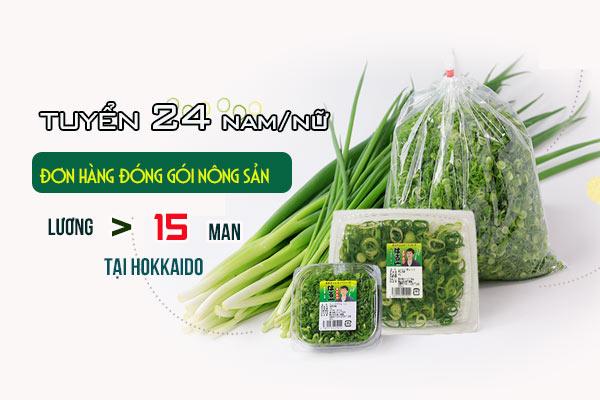 TỶ LỆ ĐỖ >99% khi tham gia đơn hàng 1 năm đóng gói nông sản tại Hokkaido, PHÍ CỰC THẤP