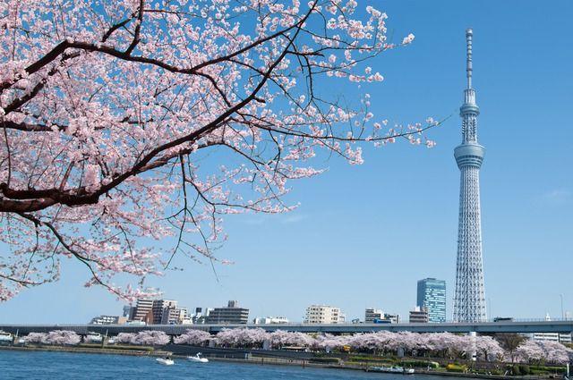 Kết quả hình ảnh cho tháp truyền hình tokyo skytree