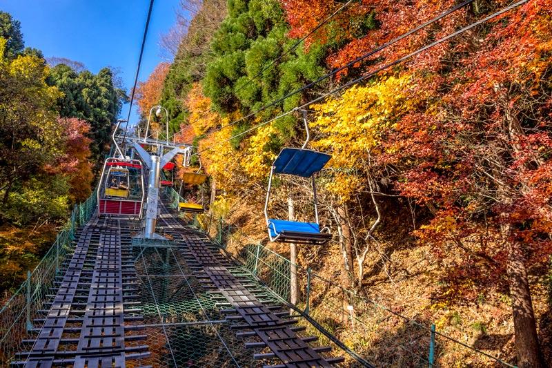 Bạn đã biết cách đi đến núi takao ngắm lá đỏ mùa thu này