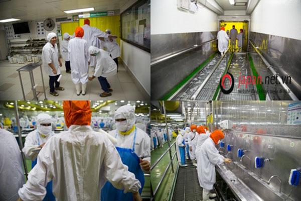 HOT Tuyển 15 nam đơn hàng chế biến thịt gà tại Kanagawa PHÍ CỰC THẤP