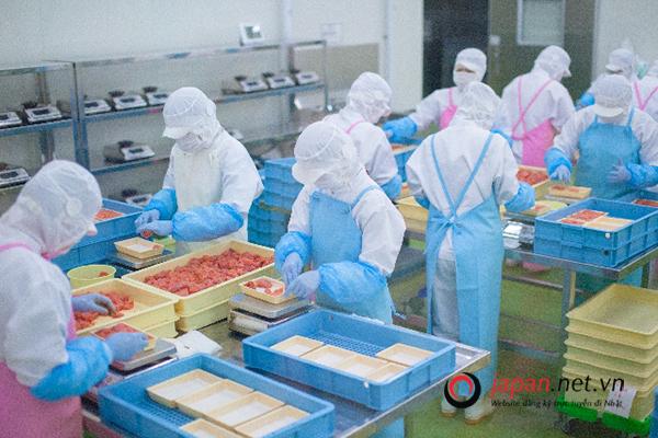 Đơn hàng chế biến thịt 1 năm VIP lương cao, tuyển số lượng hạn chế