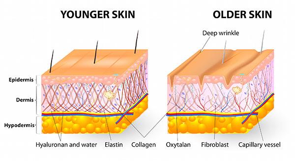Mê collagen của nhật thì chẳng thể bỏ qua 7 sản phẩm đang gây bão hiện nay