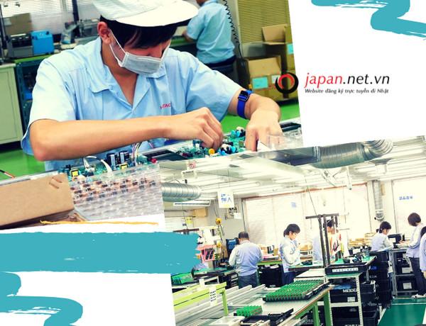 Kinh nghiệm vàng giúp TTS thi tuyển đơn hàng điện tử Nhật Bản chắc chắn đỗ